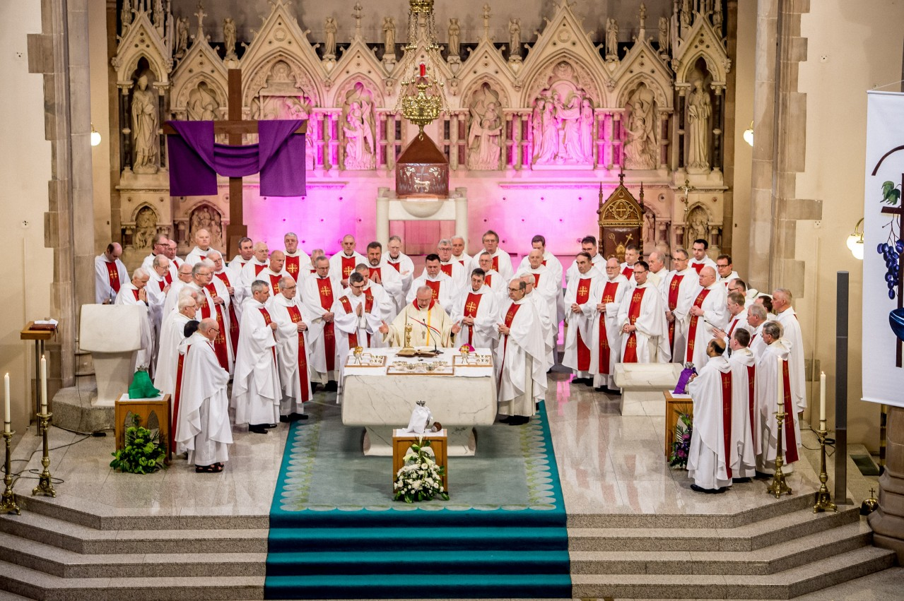 Homily - Chrism Mass 2018 - Bishop Donal McKeown